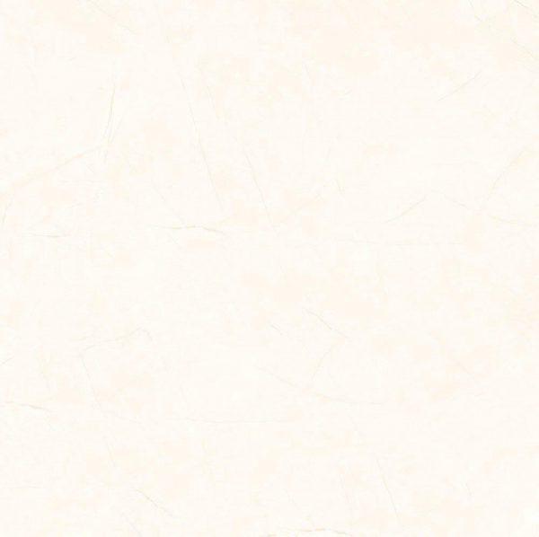 کاشی امین میبد در خیابان شیراز,نمايندگي كاشي تبريز خيابان شيراز تهران,کاشی آشپزخانه امین میبد,خرید کاشی امین میبد,نمایندگی کاشی امین میبد در خیابان بنی هاشم,کاشی امین میبد دیوار,