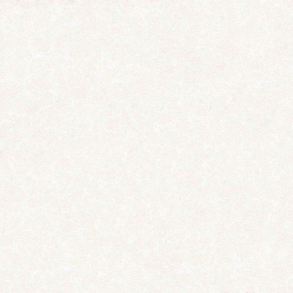 کاشی امین میبد دفتر تهران,کاشی امین میبد دستشویی,کاشی امین میبد دزفول,کاشی امین میبد درجه یک,کاشی امین میبد در یزد,کاشی امین میبد در قم,کاشی امین میبد دنیا,