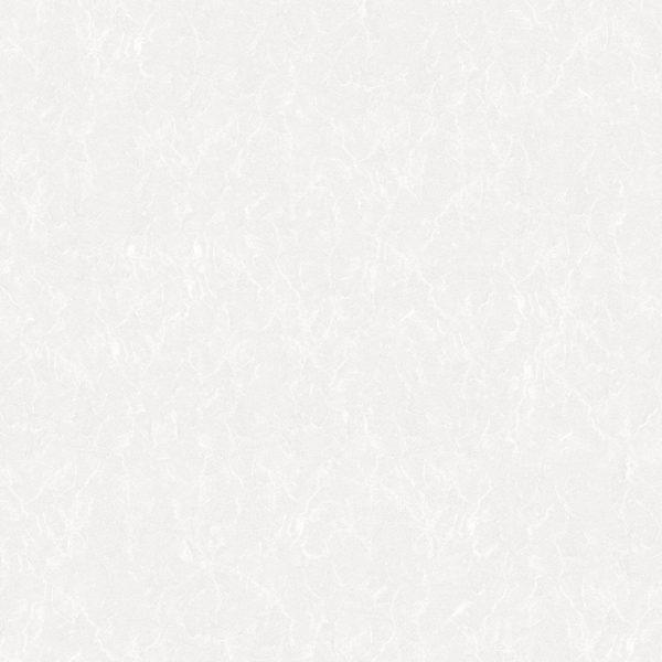 دکتر گیتا کاشی زنوزی امین میبد,کاشی امین میبد ساری,کاشی امین میبد سایت,کاشی امین میبد سفید,کاشی امین میبد سنتوری,کاشی امین میبد سمرقند,کاشی امین میبد ساووی,